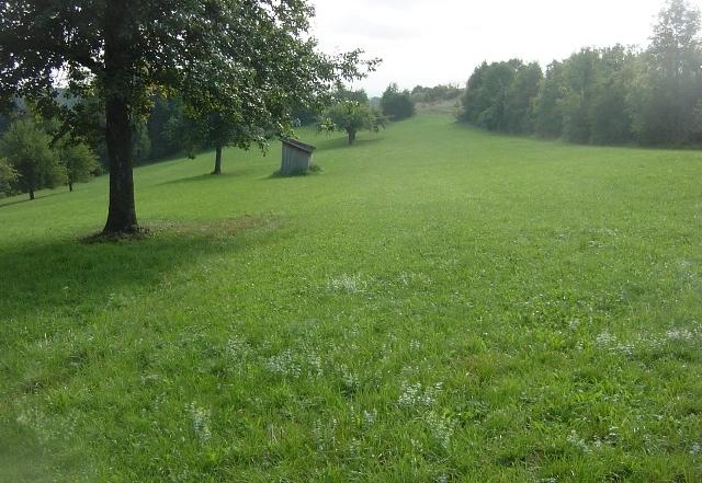 Bild Wanderweg Altheim klein