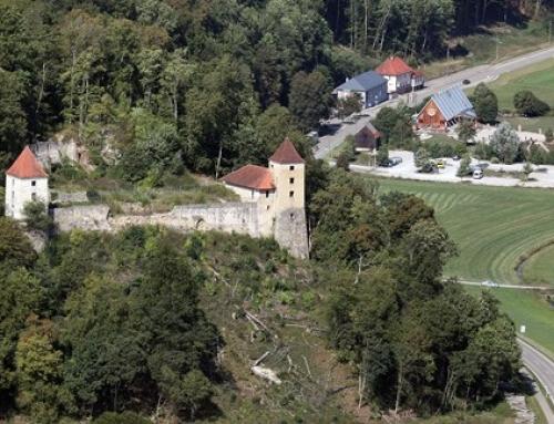 Interessengemeinschaft Kaltenburg e.V.: Erlebnis Ruine Kaltenburg – Kultur, Kunst und Geschichte im ländlichen Raum