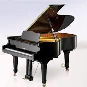 Musikinstrument MS Langenau