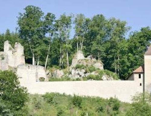 IG Kaltenburg e.V.: Erlebnis Ruine Kaltenburg – Kultur, Kunst und Geschichte im ländlichen Raum
